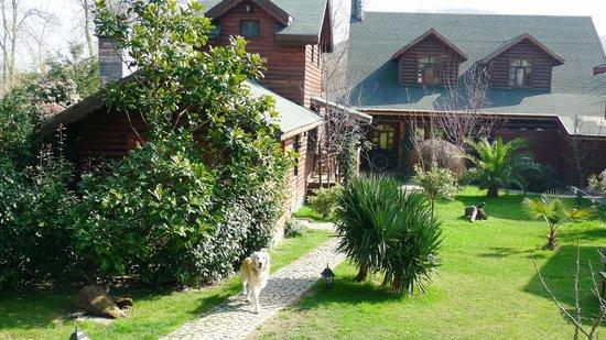 Tranquilla River Lodge:                   huzurlu bahçe