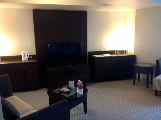 ANA Crowne Plaza Hotel Narita:                                     TV Area