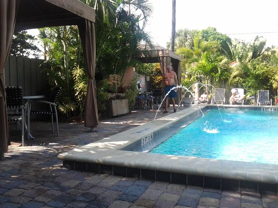 The Cabanas Guesthouse & Spa:                   saltwater pool