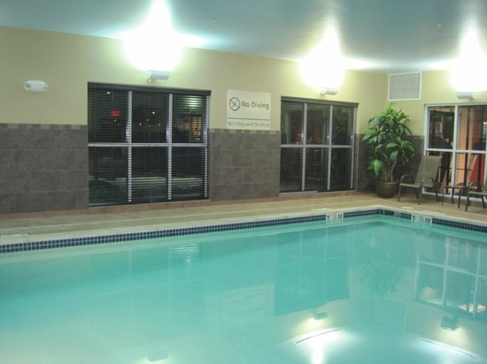 Hampton Inn and Suites Detroit/Airport-Romulus: Lovely pool area