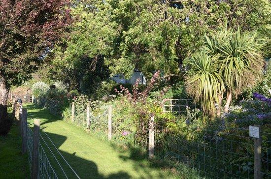Porlock Caravan Park: Dog walk in evening sun