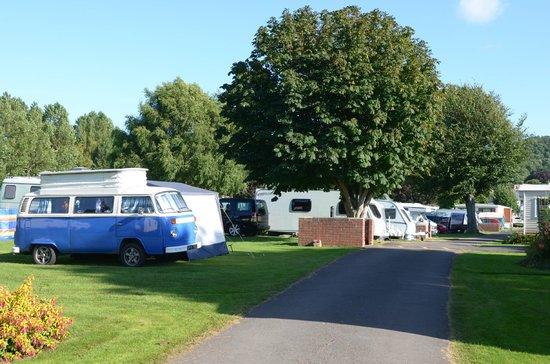 Porlock Caravan and Camping Park: Touring field