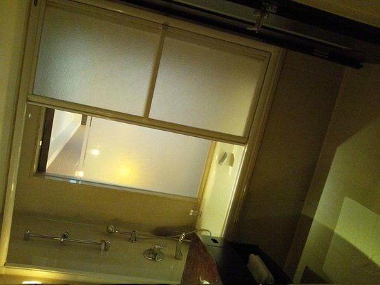 Grand Forward Hotel:                   bathroom