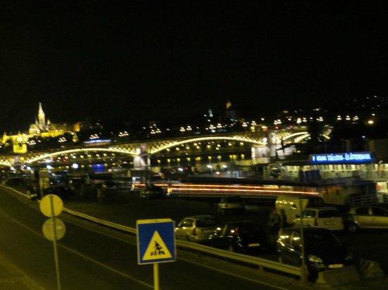 Fortuna Boat Hotel & Restaurant:                   船からの夜景は素晴らしい!
