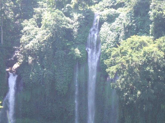 The Damai:                   Sekumpul Waterfall