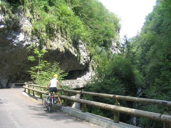 Trail of Lake Barcis :                   Il sentiero riservato a ciclisti e pedoni
