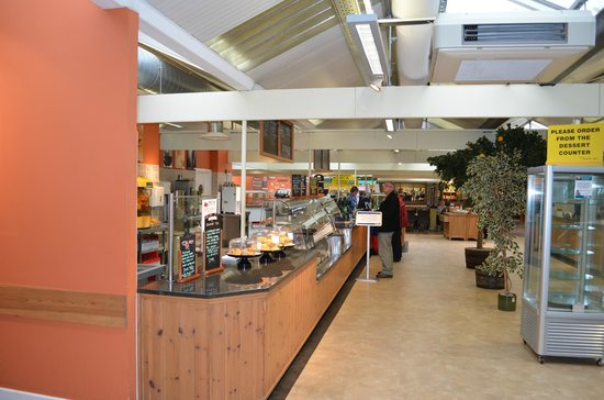 Otter Garden Centres, Ottery St Mary:                                     Welcoming service area in the restaurant