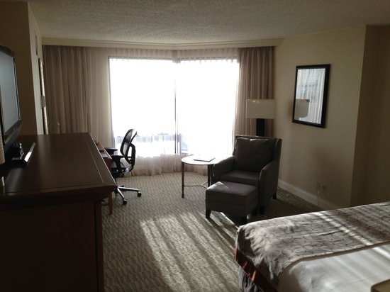 Hilton Tampa Downtown: Room 1623