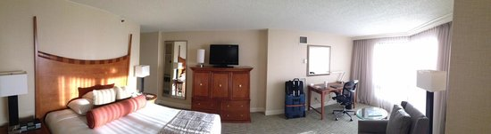 Hilton Tampa Downtown: Room 1623 Panorama