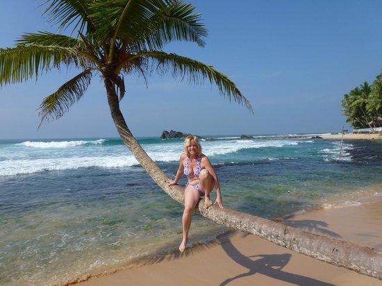 Rockside Cabanas Hotel:                   vor der Cabana