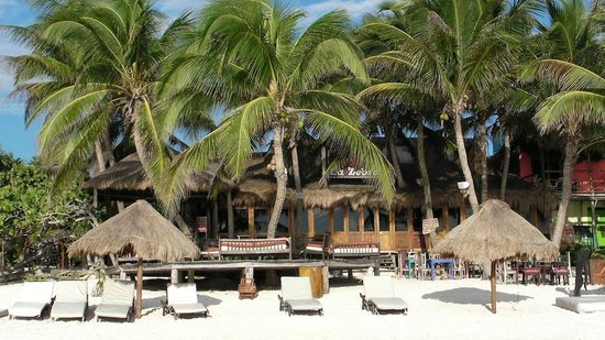 La Zebra Colibri Boutique Hotel: A view from the beach
