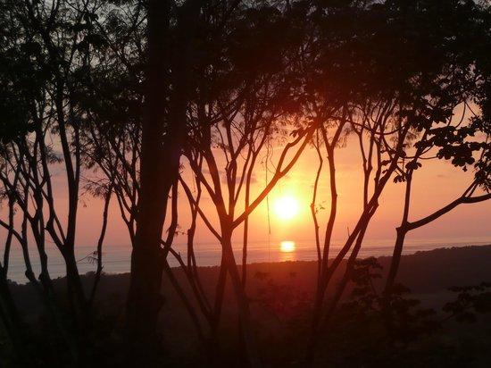 Paradise Breezes:                                                       Orange Sunsets                          