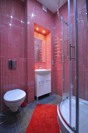 Apartment Grecheskie: Bathroom with shower