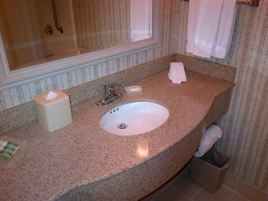 Hilton Garden Inn Toronto/Mississauga: Bright and clean washroom