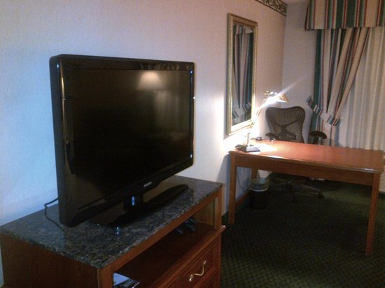 Hilton Garden Inn Toronto/Mississauga: Big screen TV