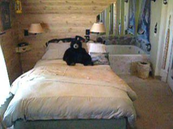 Hannah Marie Country Inn:                                     Bed in the Northwoods Hideaway