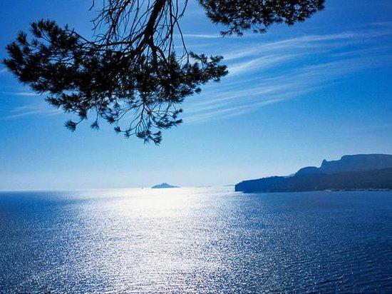Riviera Discovery Private Tours: mediterrannée