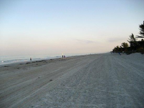 Cameron Cove: Der breite große Strand