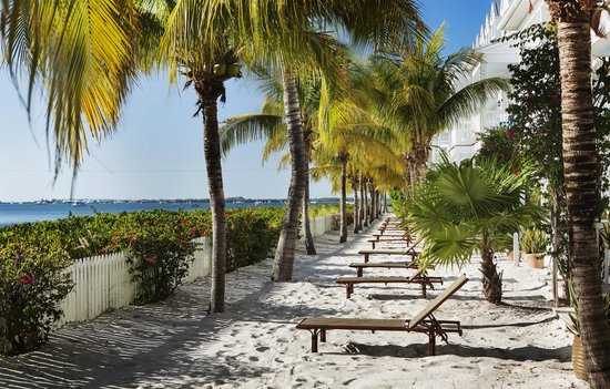 Parrot Key Hotel and Resort: Waterfront views and white sand terraces