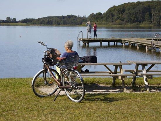 Maribo Vandrerhjem: Søen