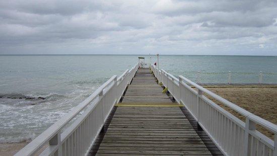 رويال ديكاميرون مونتيجو بيتش:                   Dock                 