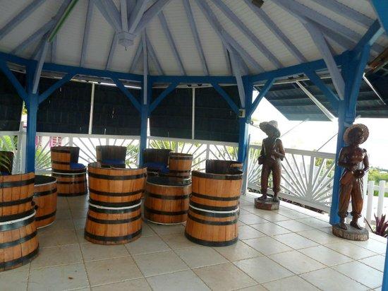 Residence Ilot Bleu:                   carbet bar