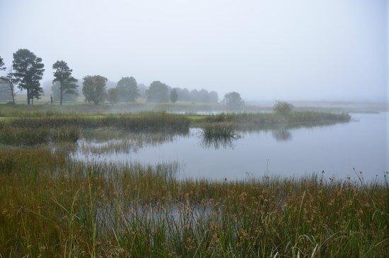 Moorcroft Manor:                   Lake on the property