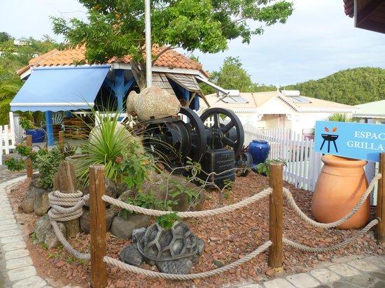 Residence Ilot Bleu :                   Décoration du jardin