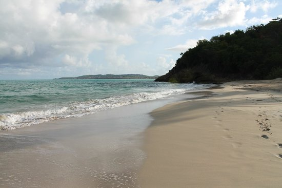 Antigua's Yepton Estate Cottages :                   Beach near the hotel just after sunrise - Coconut Beach