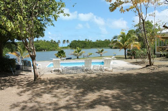 Antigua's Yepton Estate Cottages:                   Yepton's pool, ocean in distance