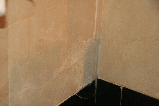 Mediterranean Palace Hotel:                   Reparación de la humedad en la bañera.