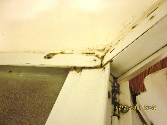 Motel 6 Lost Hills:                   Room 135 Shower