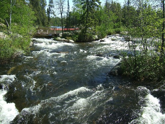 Canoeing Picture Of Rushing River Provincial Park