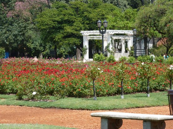 The Rose Garden Parque Tres de Febrero - Picture of Buenos Aires ...