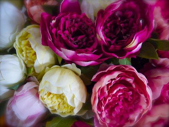 Ventimiglia Old Town:                   Flowers at Ventimiglia Market