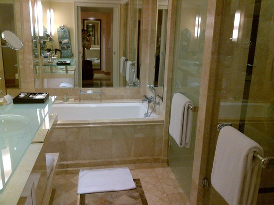 Grand Hyatt Jakarta:                   Bathroom with non-functioning bath and terrible water quality