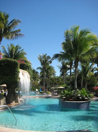 Hyatt Residence Club Bonita Springs, Coconut Plantation:                   The view of the waterfall pools.