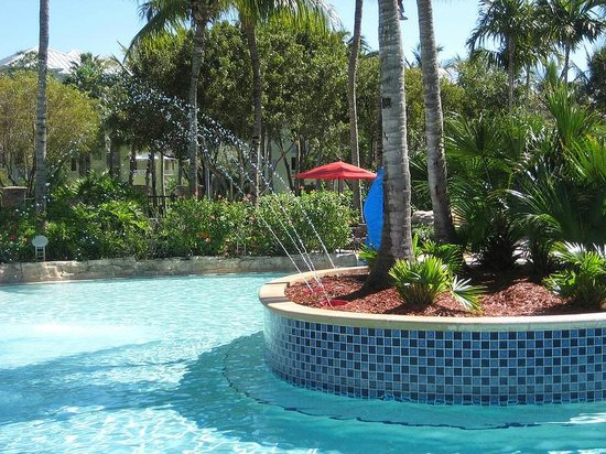 Hyatt Coconut Plantation :                   The view of the fountains and pool benches.
