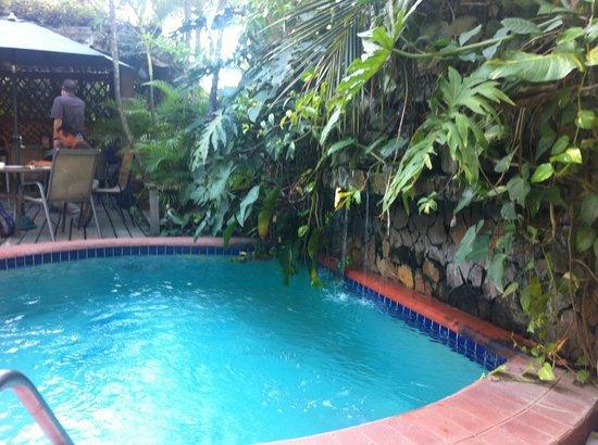 Boutique Hotel La Cordillera :                                     Pool