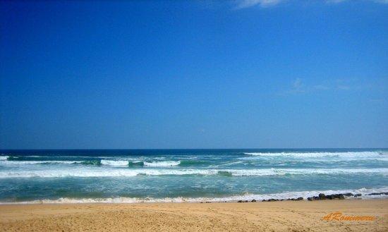 Brenton on Sea:                   Beach