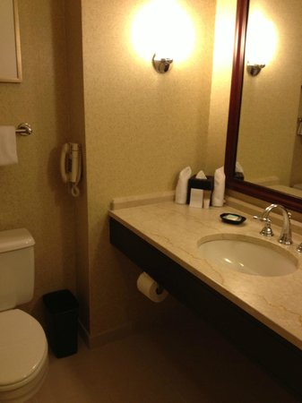 Hyatt Regency Boston:                   Sink area