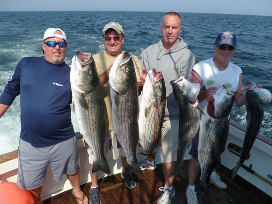 Tuna Hunter Fishing Day Charters:                   Tuna Hunter Striped Bass