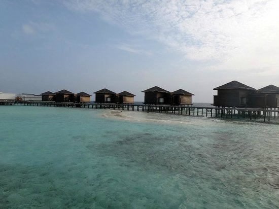 Dhevanafushi Maldives Luxury Resort Managed by AccorHotels: Ocean Pearl