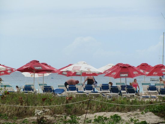 Harbour Lights :                   Lounge chairs and umbrellas were two deep, not the typical 5 deep further down
