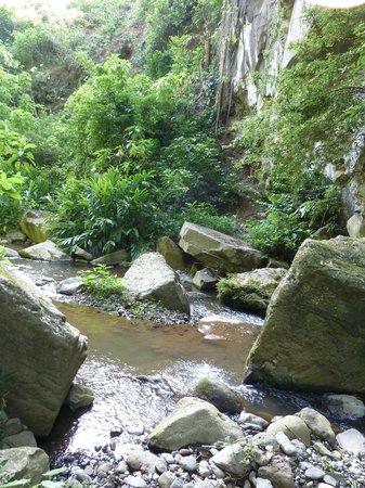 Songota Falls Lodge: Hiking down to the waterfall