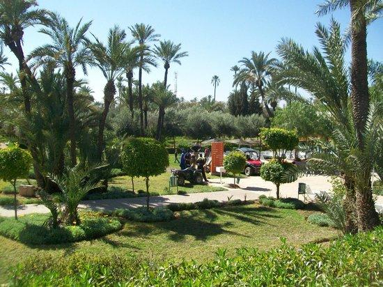 IBEROSTAR Club Palmeraie Marrakech:                   parc a pétanque
