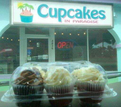 Cupcakes In Paradise:                   Sweet Treats!