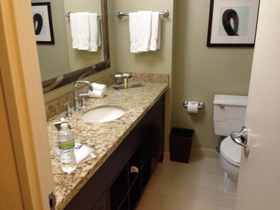 Doubletree by Hilton Chicago Magnificent Mile: bathroom, very roomy