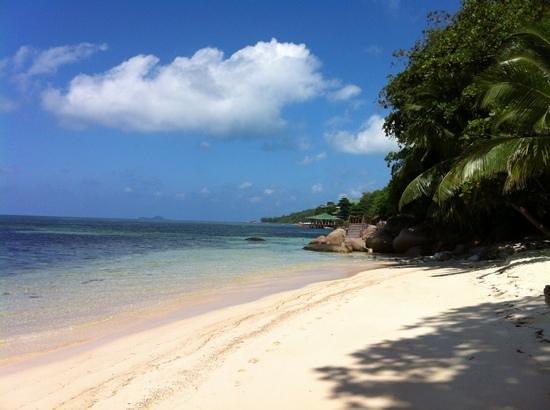 Coco de Mer - Black Parrot Suites:                   Hotel beach