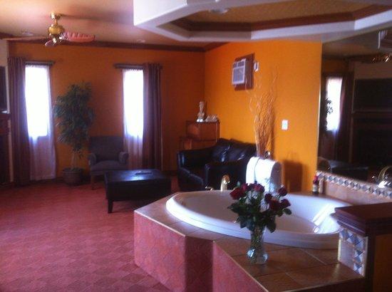 Sunset Inn on the Park:                   room